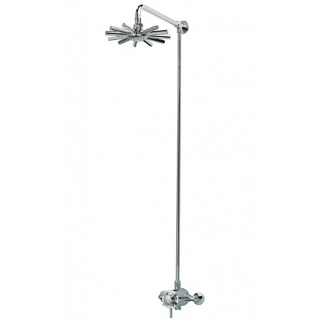 Triton Mersey exposed concentric shower with fixed head